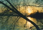 Sonnenuntergang©Friedrich Dankenbring